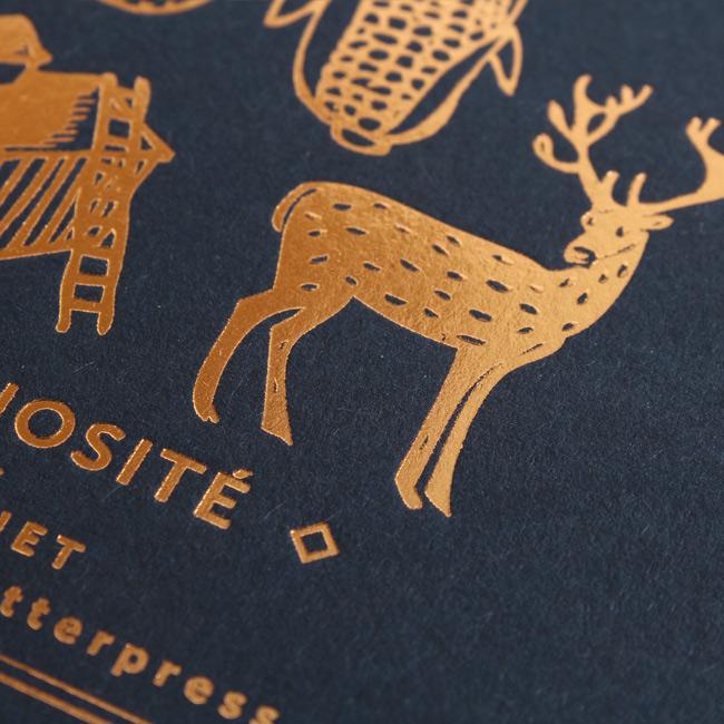 ledp_carnet_letterpress_curiosite1_15